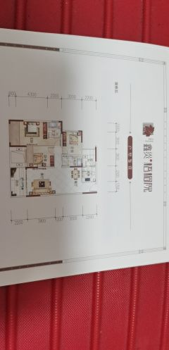 鑫炎梧桐院3室2厅2卫